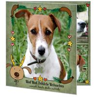 Tierische Weihnachten mit Hund